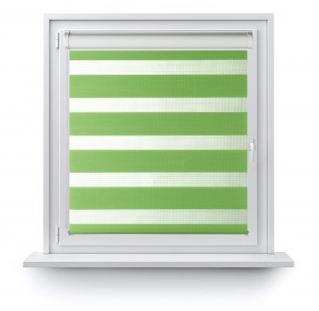Roller blind in PVC cassette with guide Day-Night Classic Kiwi AG312