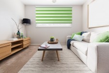 Cassette Superior roller blind Day-Night Classic Kiwi AG312