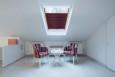 Plisa dachowa basic premium bakłażan